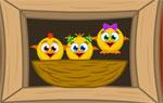 фънски игра Пилетата